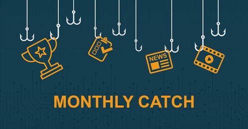 Payara Monthly catch header for blog.
