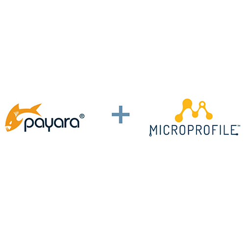 Payara and MicroProfile image