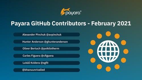 GitHub contributors February 2021