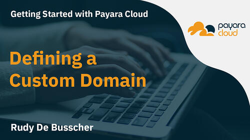 Creating Custom Domains for Applications in Payara Cloud