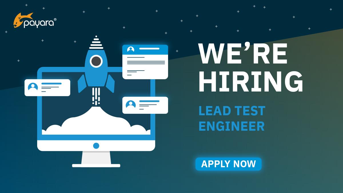 Lead Test Engineer