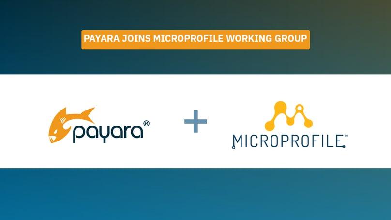 MicroProfile Working Group