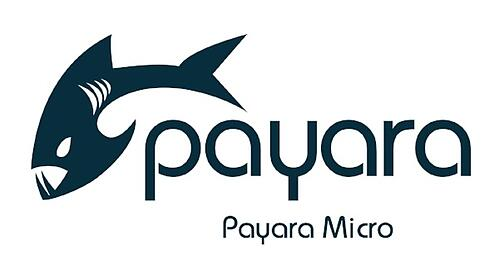 Payara-Micro-small.jpg