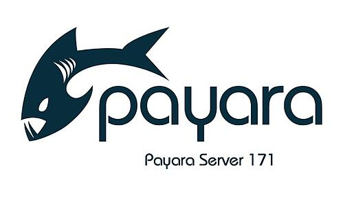 Payara-Server-171-small.jpg