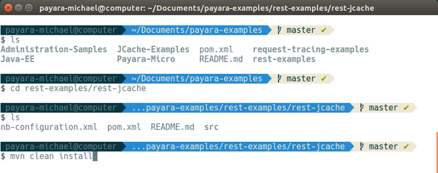 13 - payara basics - creating a simple cluster.png