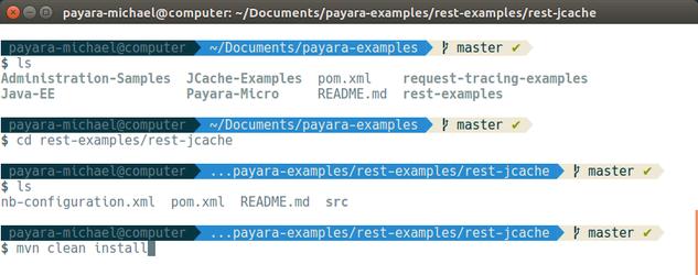 13 - payara basics - creating a simple cluster.png