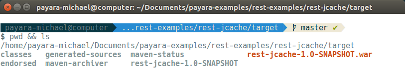 14 - payara basics - creating a simple cluster.png