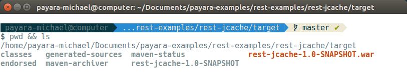 14 - payara basics - creating a simple cluster.png