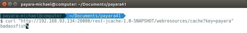19 - payara basics - creating a simple cluster.png
