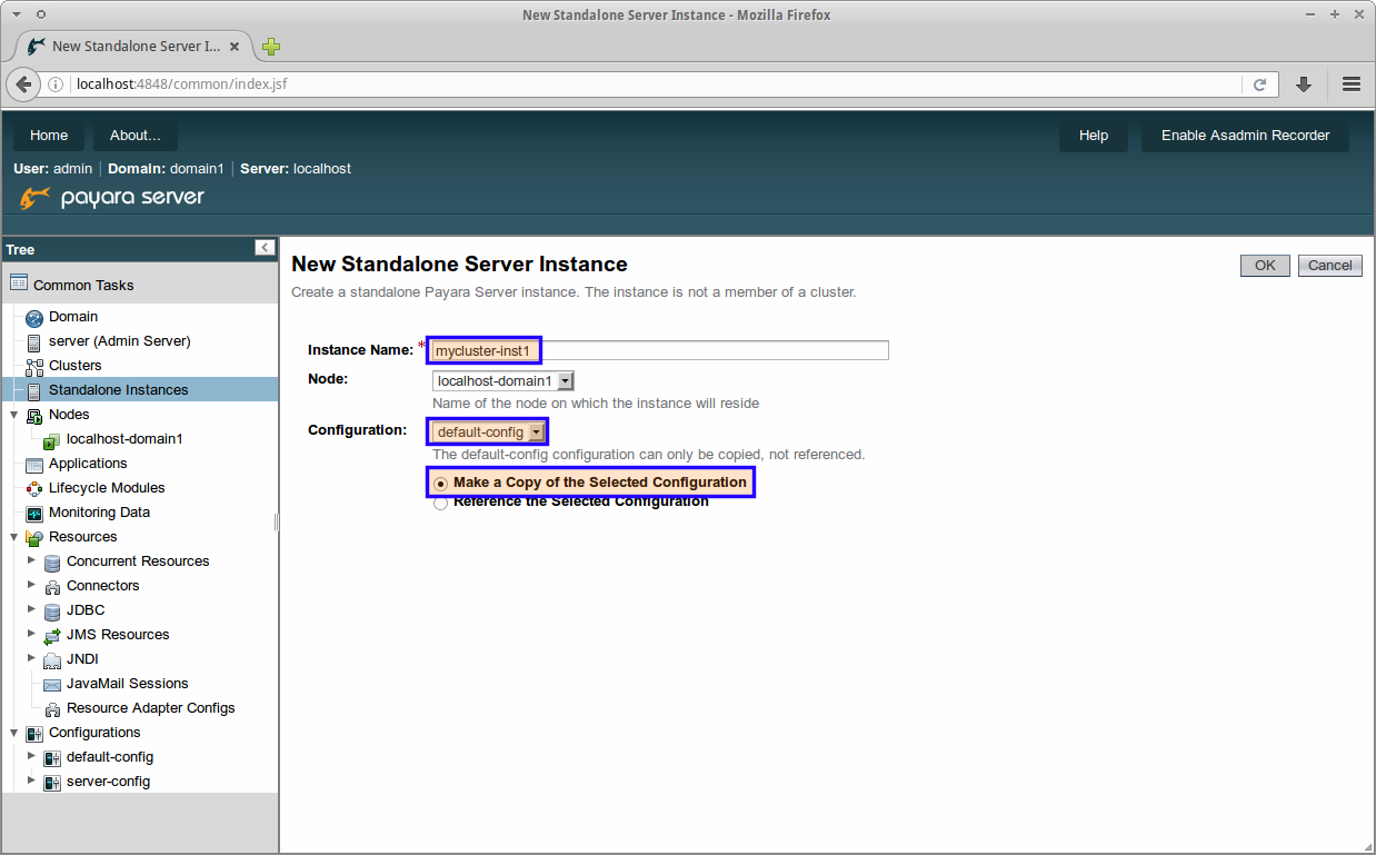 1-_Creating_a_simple_cluster_with_Payara_Server.png
