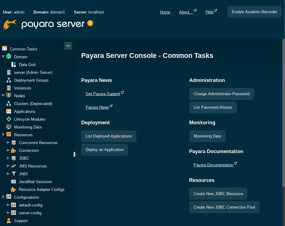 Payara 5 console.png