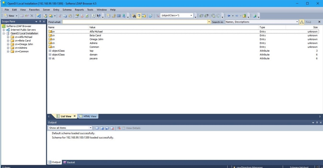1- ldap-browser-check.jpg