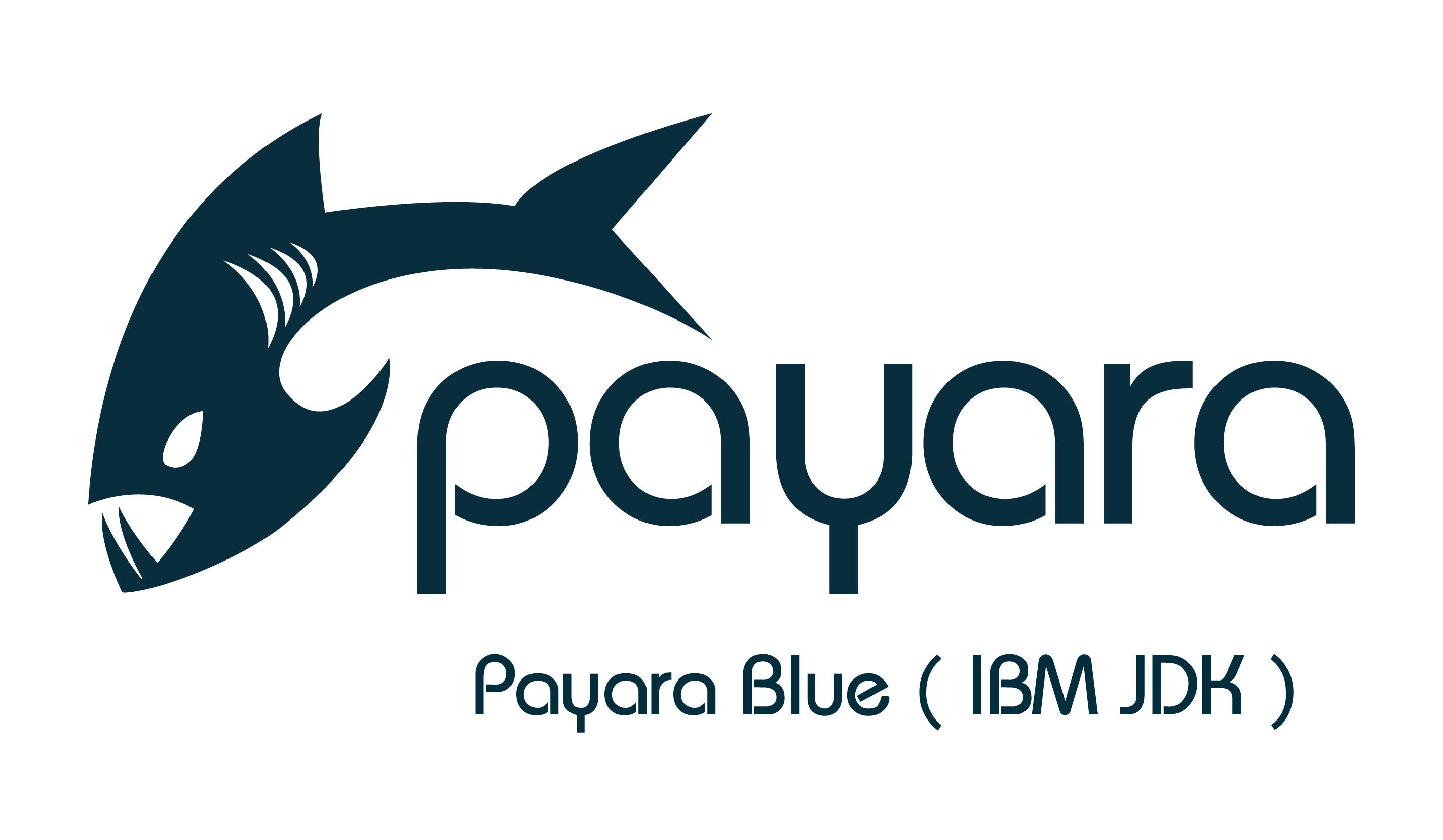 Payara-Blue-IBM-JDK.png