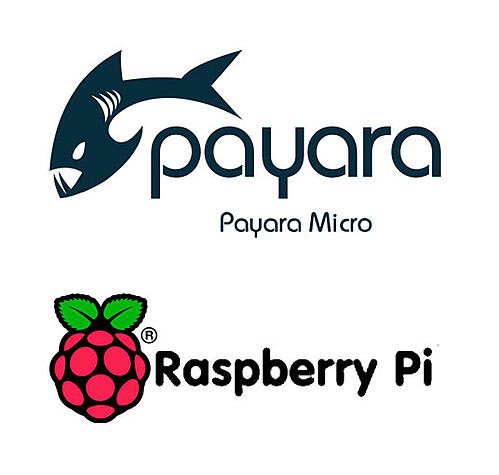 Payara-Micro-on-RaspberryPi.jpg