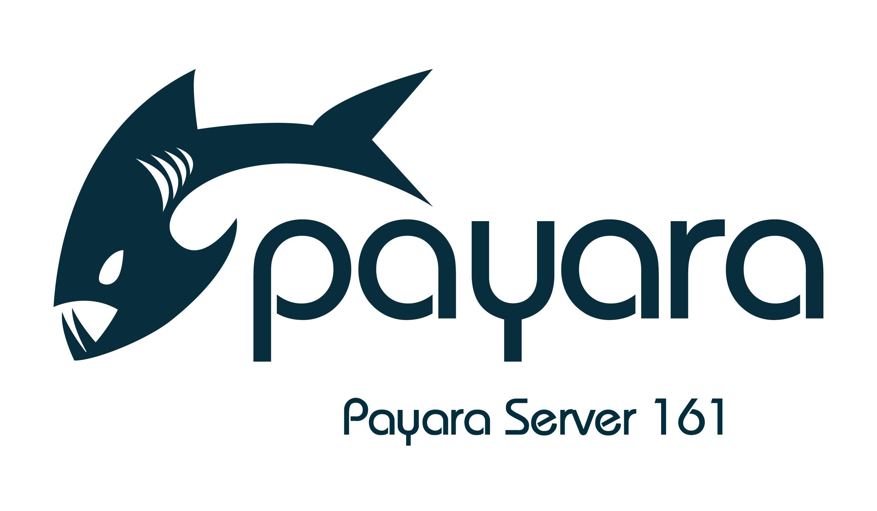 Payara Server 161