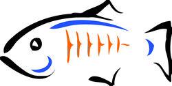 glassfish_logo_transparent_resized.jpg