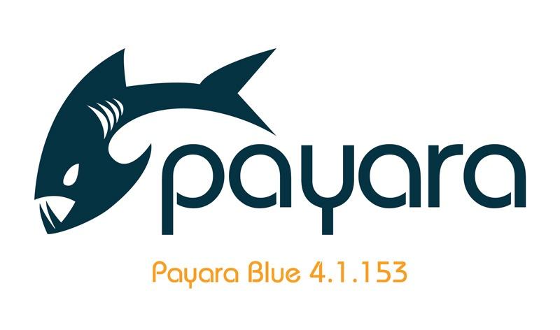 payara-blue-medium-logo2_large.jpg