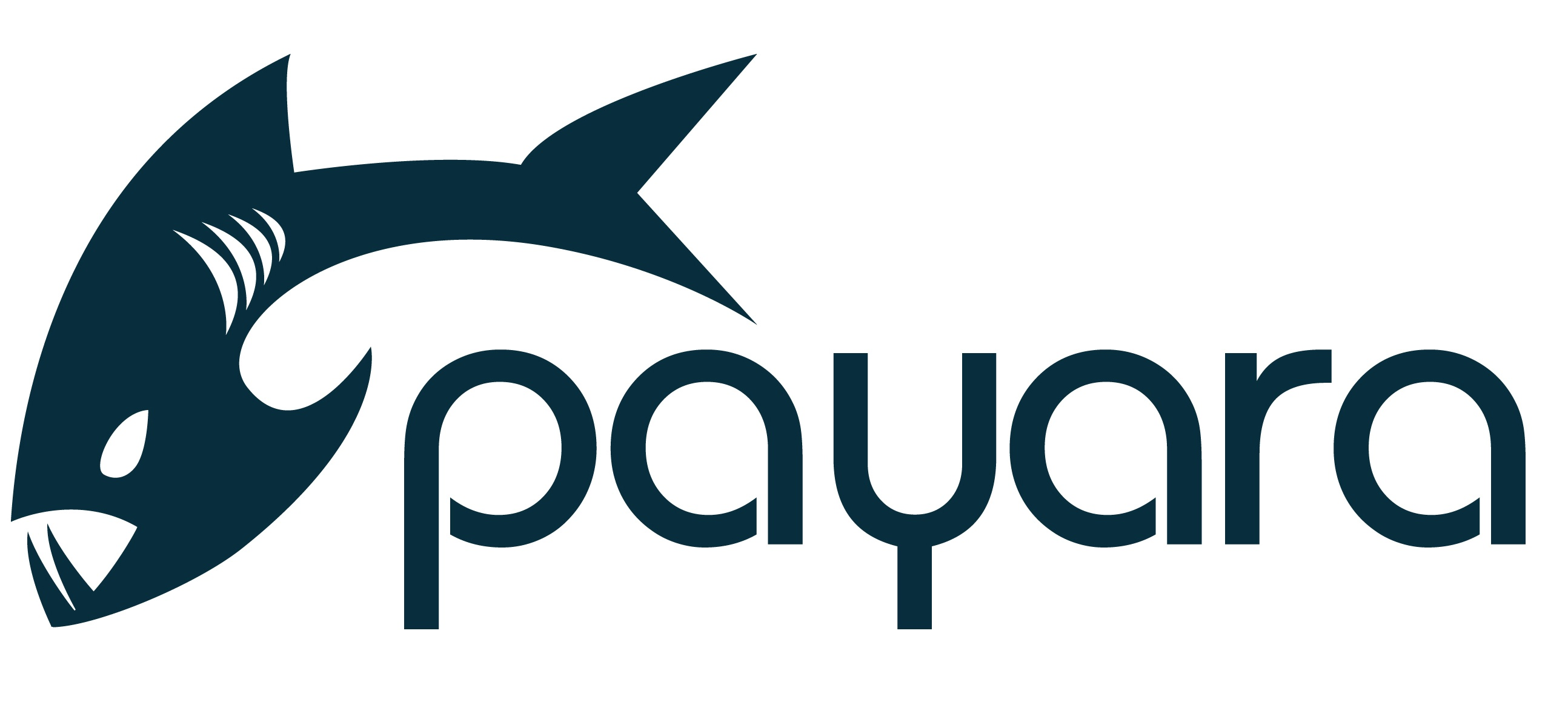 payara_logo_edited.jpg