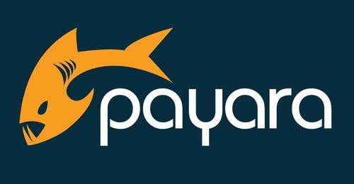 Payara_Logo-1