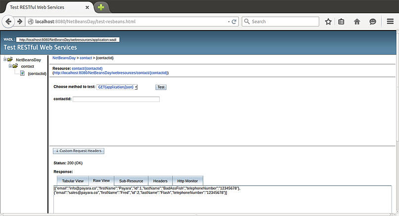 NetBeans Test app