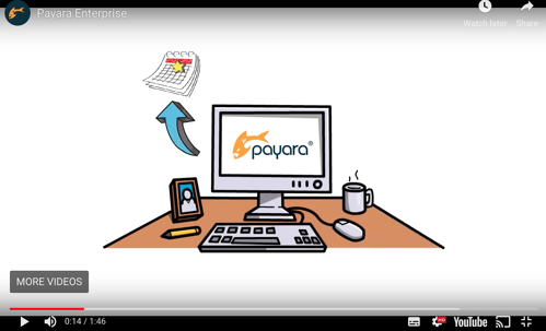 Payara Enterprise support video