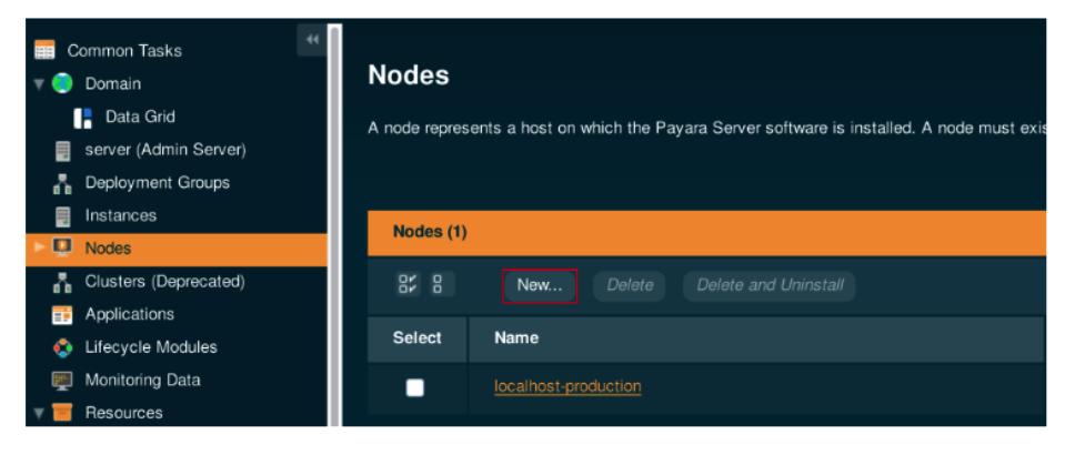 nodes in payara server