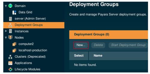 Deployment Groups in Payara Server