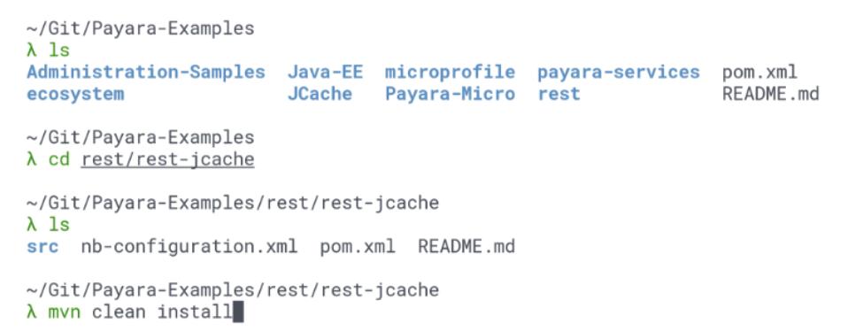 Payara code examples on Github