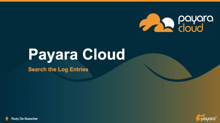 How to search log entries in Payara Cloud video