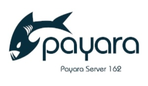 Small-Payara-Server-162.jpg