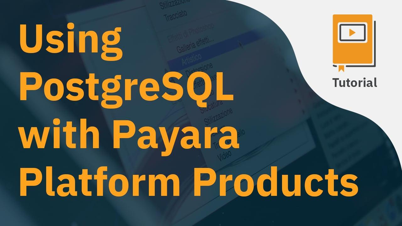 Using PostgreSQL with Payara Platform Products