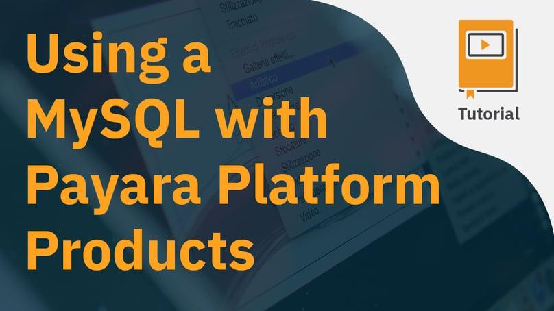 Using a MySQL with Payara Platform Products