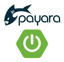 payara-and-spring-boot_resized-1.jpg