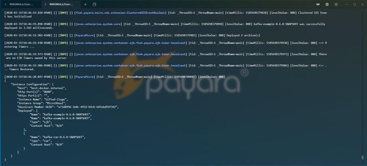 Payara Micro Kafka Deployment
