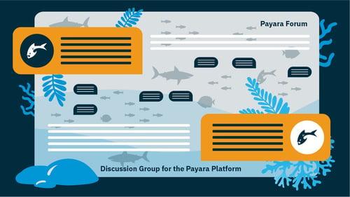 Payara Forum image