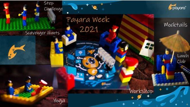 payara week-1