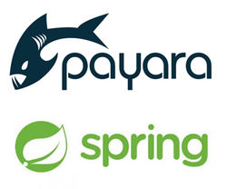 payara__spring_resized.jpg