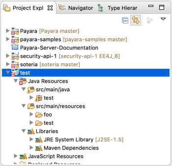 plugin-project-explorer