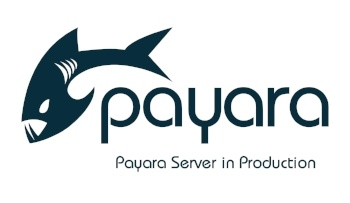 small-Payara-Server-in-Production-275818-edited.jpg