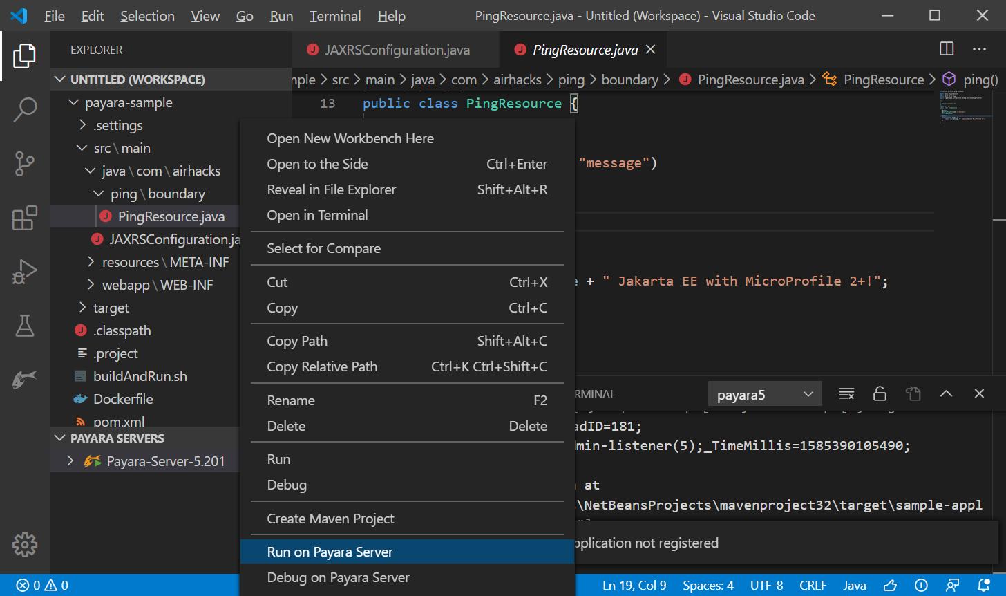 run application on payara server