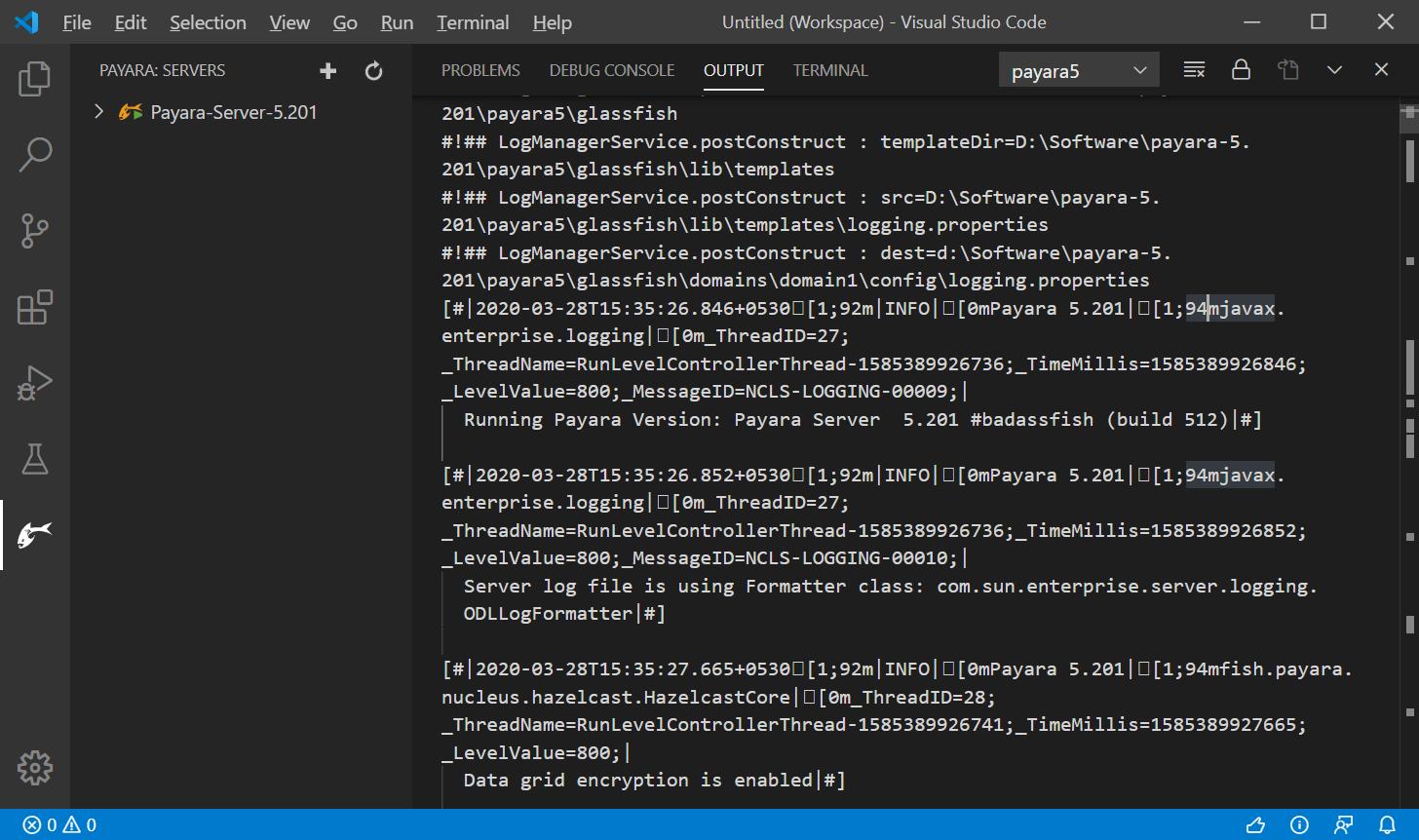 output window screen shot
