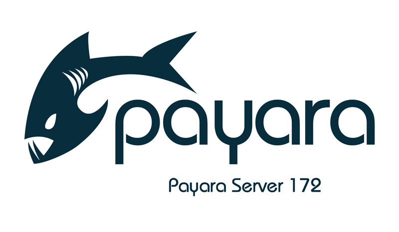 What's New in Payara Server 172?
