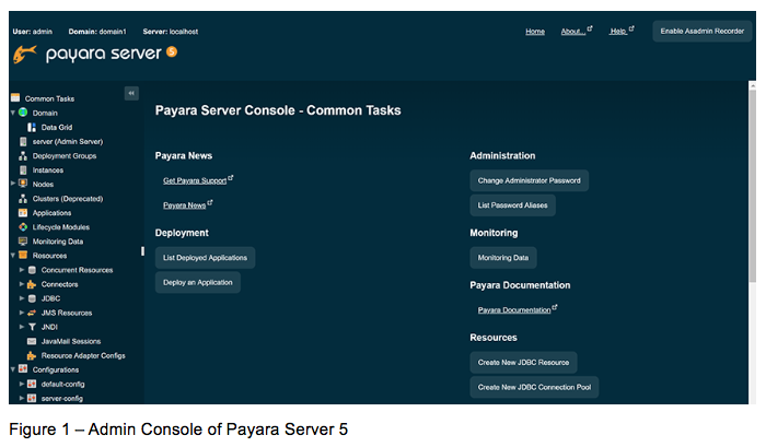 Basics of Payara Server Admin Console - #1 Overview and Concept