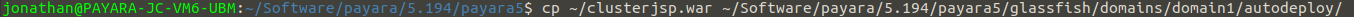 autodeploy_copy_clusterjsp