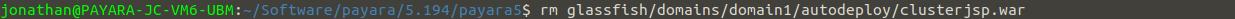 remove_autodeploy_clusterjsp