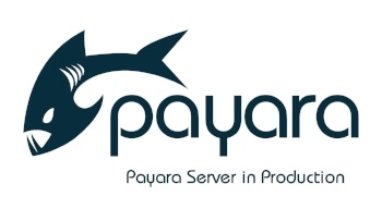 Fine Tuning Payara Server in Production
