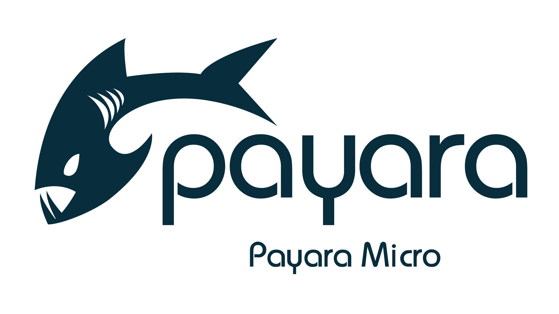 7ab124182c08 Both Payara Server and Payara Micro can cluster together and share data  using Hazelcast. Out-of-the-box