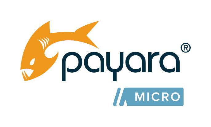Connect Payara Micro to External JMS Broker by Deploying a RAR file