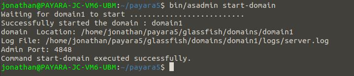 startpayara5